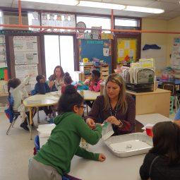 Providence Teachers